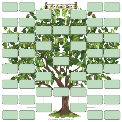 U555U | Images: Blank Family Tree Template 4 Generations